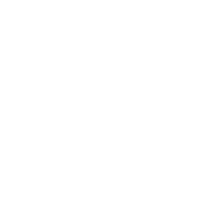 Raging-Bulls-Webseite